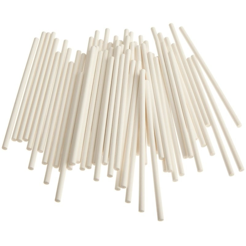 "8"" -20 cm Cake Pop Sticks (100 sticks)"