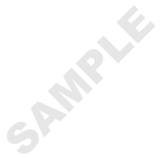 Macaron Boxes Sample Pack