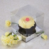 1 Cupcake Clear Box w flexi Hole silver insert($1.25pc x 25 units)
